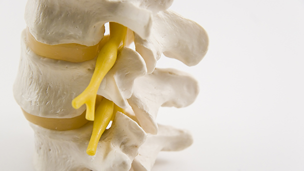Scientists discover a new way to enhance nerve growth following injury
